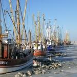 Kutterhafen im Winter