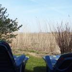 Terrasse, Frühlingssonne tanken